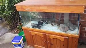 Fish Aquarium Medowie Port Stephens Area Preview
