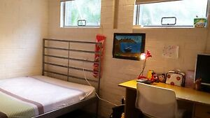 Single room with double bed St Lucia Brisbane South West Preview