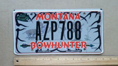 License Plate, Montana, Bowhunter, Antlers, Arrowhead, Native Americans, AZP 788