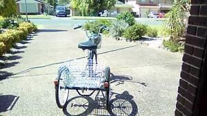 Silver Rola Trike Salamander Bay Port Stephens Area Preview