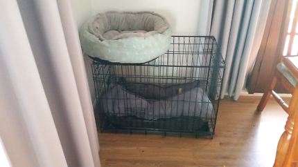 Medium sized dog crate and extras