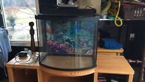 26 gallon fish tank with custom wooden stand
