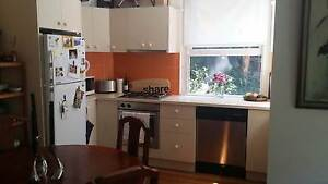 Furnished room Bondi - share with 1 F and 2 cats Bondi Beach Eastern Suburbs Preview