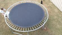 Large Round Trampoline Bray Park Pine Rivers Area Preview