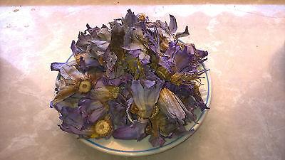 (31,90€/100g) 50 Gramm Räucherwerk Nymphaea caerulea / Blauer Lotus Ernte 7/2017