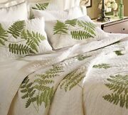 Pottery Barn Fern