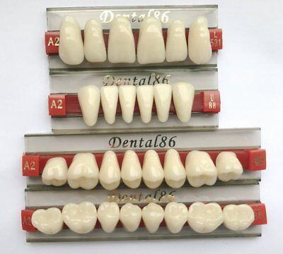 Dental Fake Teeth Realistic Horror Prank Prop Fun Liars Tooth Acrylic Resin Set - Realistic Fake Teeth Halloween