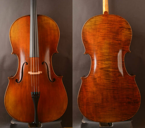 Amzing 1pc back German oil!A Modern Stradivari  4/4 cello !strong Wide deep tone