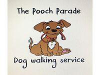 Pooch Parade Dog Walking Service.