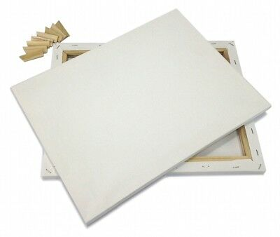 """Lot of 2 ARTIST CANVAS 16x20"""" Framed Pre-Stretched BLANK Cotton Double Gesso"""