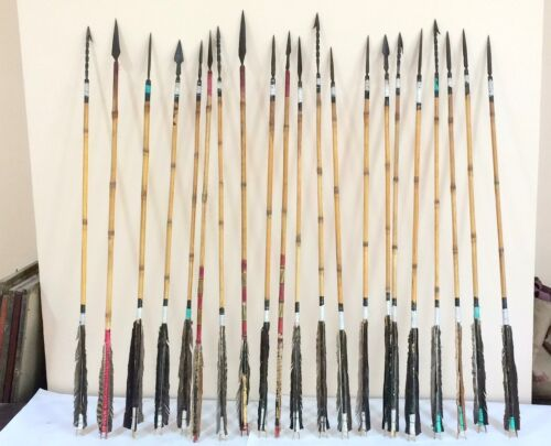 arrows long with feathers