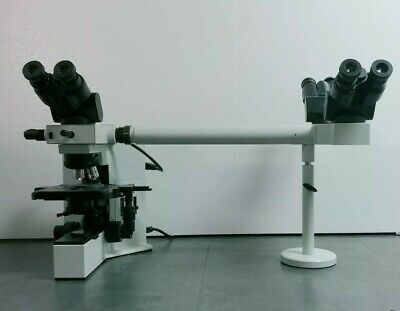 Olympus Microscope Bx40 With Dual Port Side By Side Teaching Bridge