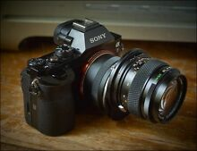 Sony a7 EVF full-frame digital camera South Plympton Marion Area Preview