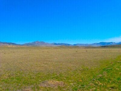 VACANT LAND FOR SALE 1/4 ACRE APACHE COUNTY, ARIZONA QUIET, REMOTE, A VIEWS  - $455.00