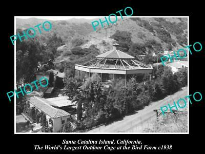 OLD PHOTO OF SANTA CATALINA ISLAND CALIFORNIA, WORLD BIGGEST BIRD CAGE c1938