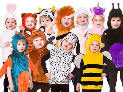 Baby Toddler Animal Costume Boy Girl Zoo Jungle Fancy Dress Infant Book - Baby Bug Kostüm
