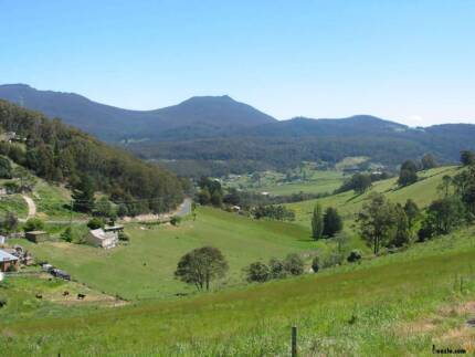 Wanted minimum 3 acres in Collinsvale or Glenlusk Collinsvale Glenorchy Area Preview