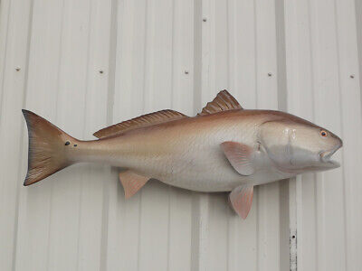 44 Amberjack Half Sided Fish Mount Replica Affordable Coastal Decor Indoors Or Outside