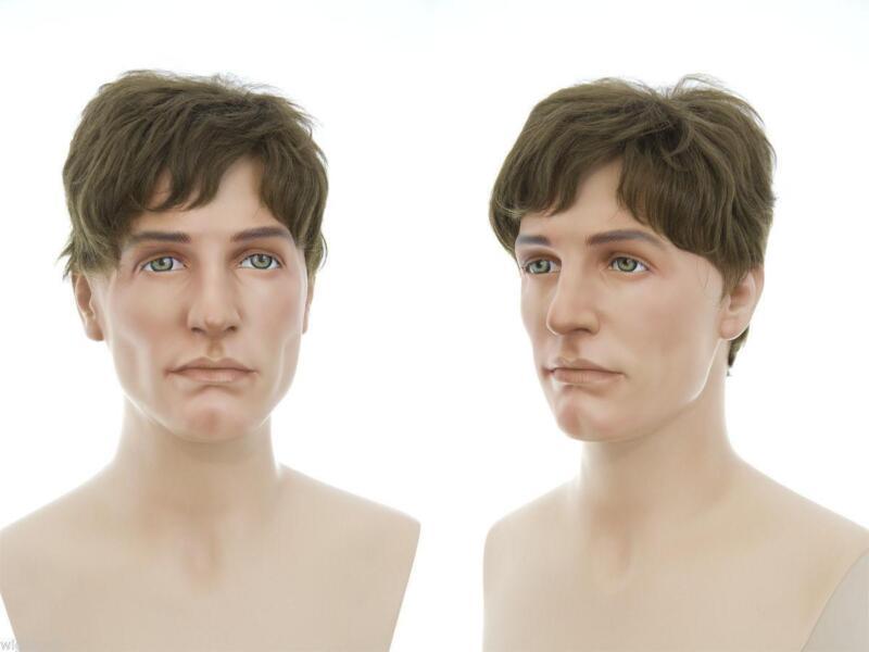 Mens Wigs Human Hair Ebay