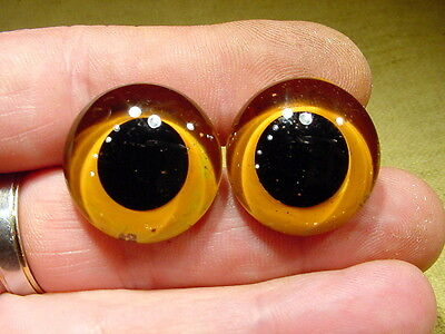 a pair vintage solid Glass Eyes size 10 mm teady bear taxidermy age 1910 Art A64