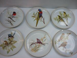 Set of six Westminster Australian bird plates Dapto Wollongong Area Preview