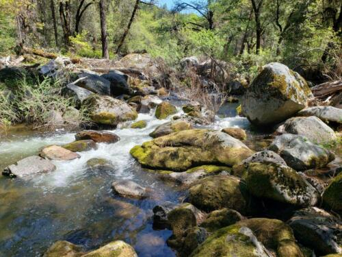 SOUTH FORK PLACER MINE, GOLD MINING CLAIM, TUOLUMNE COUNTY, CA