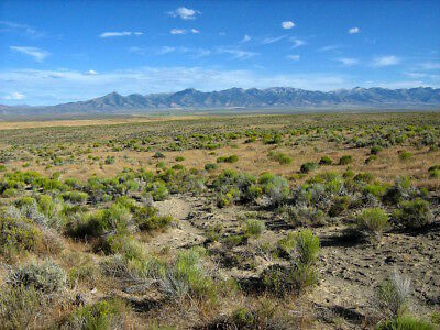 RARE 40 ACRE NEVADA RANCH  FINANCED @ 0%  SMALL DOWN PAYMENT! NO CREDIT CHECK!
