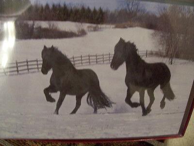 LEANIN TREE  CHRISTMAS CARD SET BEAUTIFUL HORSES RUNNING IN SNOW 10 PK NEW !