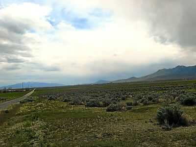 "RARE! 4.77 ACRE NEVADA RANCH ""GRASS VALLEY"" CLOSE TO TOWN! CASH SALE~NO RESERVE!"