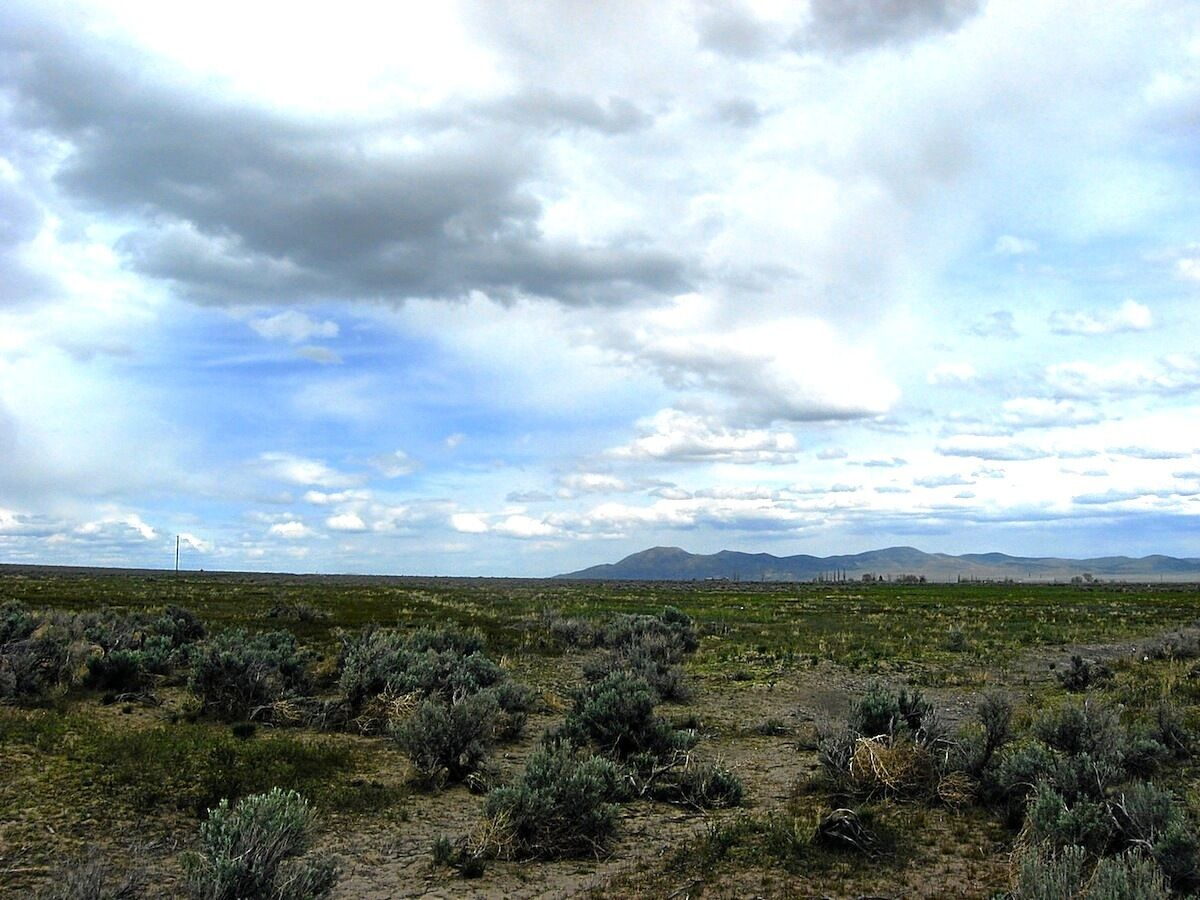 """RARE! 4.77 ACRE NEVADA RANCH """"GRASS VALLEY"""" CLOSE TO TOWN! CASH SALE~NO RESERVE!"""