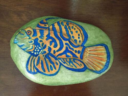 "Mandarin Tropical Fish Hand Painted Rock Art 8"""