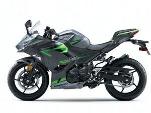 2019 Kawasaki Ninja NINJA 400 ABS SE