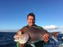 Mornington Holiday Apartment (Paddle Swim Fish Shop Dine) Mornington Mornington Peninsula Preview
