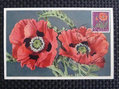 SCHWEIZ MK 1959 689 PFLANZEN MOHN FLOWERS MAXIMUMKARTE MAXIMUM CARD MC CM 9779