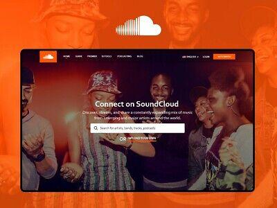 Your Own Music Platform Website - Online Business