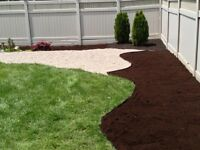 SOD INSTALL BEST PRICE IN HRM