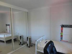 Large dbl size bedroom close to shops/restaurants/transports/UNSW Kingsford Eastern Suburbs Preview