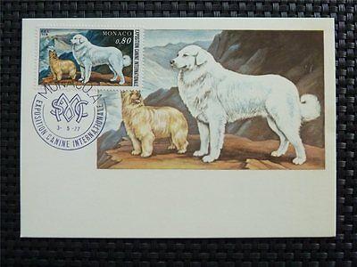 MONACO MK 1977 HUNDE DOG DOGS MAXIMUMKARTE CARTE MAXIMUM CARD MC CM C4789
