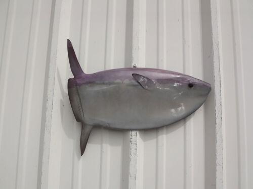 "20"" Mola Mola (Sunfish) Half Fish Mount Replica- 20 Business Day Production Time"