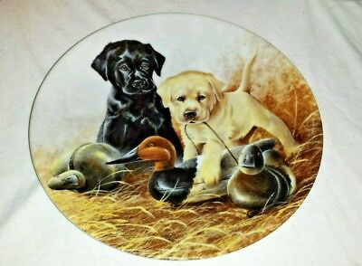 1988 Edwin Knowles Collectors Plate A Perfect Set Labrador Retrievers Dog for sale  Manahawkin