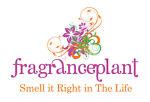 Fragranceplant