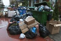 Best price Junk and Garbage Removal Services