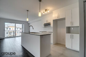 Fabulous 3 bedrooms, 5 1/2, walk-out, Plateau/Aylmer, Brand New