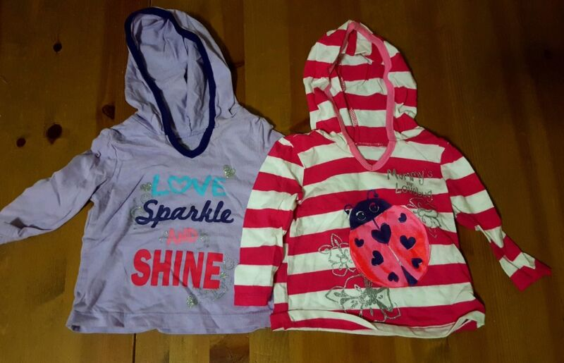 Lot Of 2 Pcs Infant Girl Graphic Hooded Shirts Size 6-9 Months Childrens Place