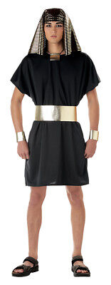 Egyptian King Tut Pharaoh Adult Costume ()