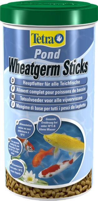 Tetra Pond Wheatgerm Sticks 200G 780G 1.4KG 2KG Winter Autumn Food TetraPond