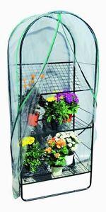 Serra con telo mini serra da giardino terrazzo balcone in for Mini serra da balcone