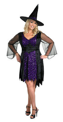 Brilliantly Bewitched Witch Plus Size Women's Costume Adult Dress Halloween