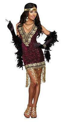 Sophisticated Lady Flapper Costume for Women size S & XL New by Dreamgirl 9837