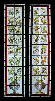 Beautiful Painted Birds & Butterflies Pair Antique Stained Glass Sidelights